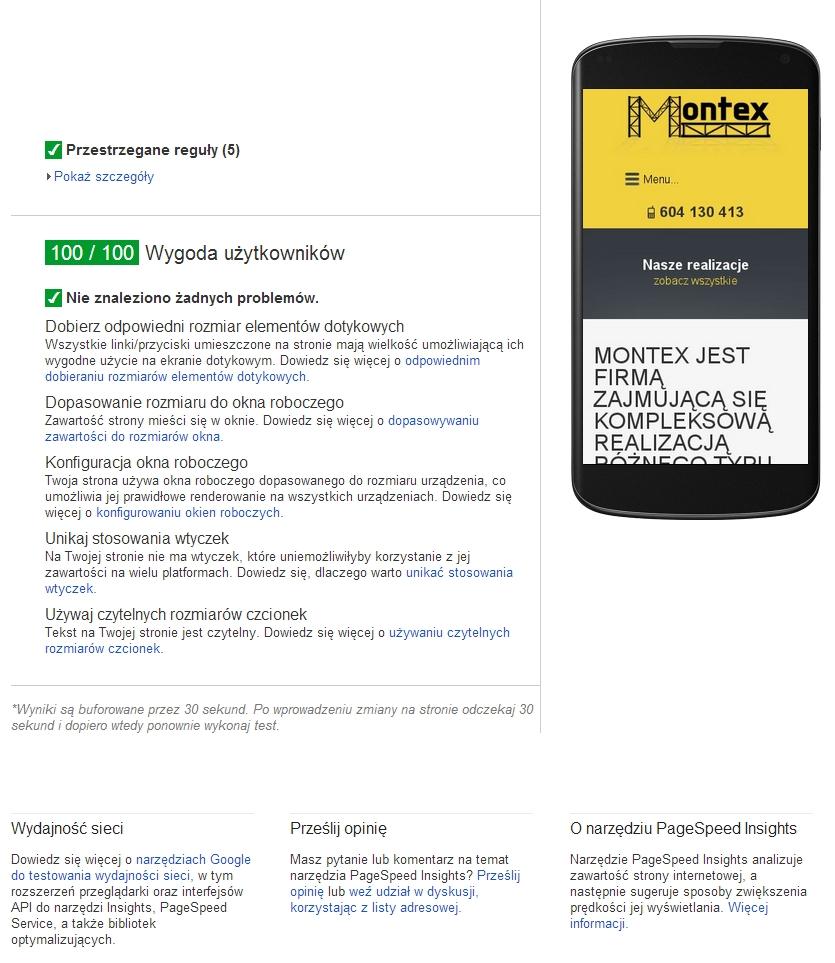 pagespeed-strony-mobilne-egzamin-zdany
